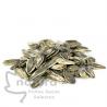 Semillas de Girasol Tostadas con Aguasal
