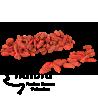 Bayas de Goji (Lycium barbarum)